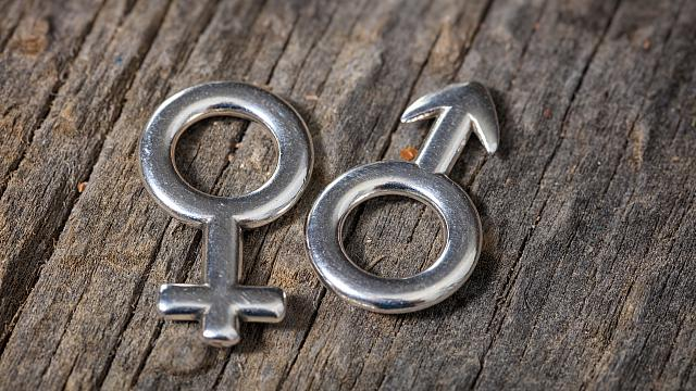 Gender female and male